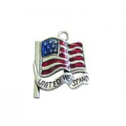 United We Stand Flag - Hand Painted #2592HP